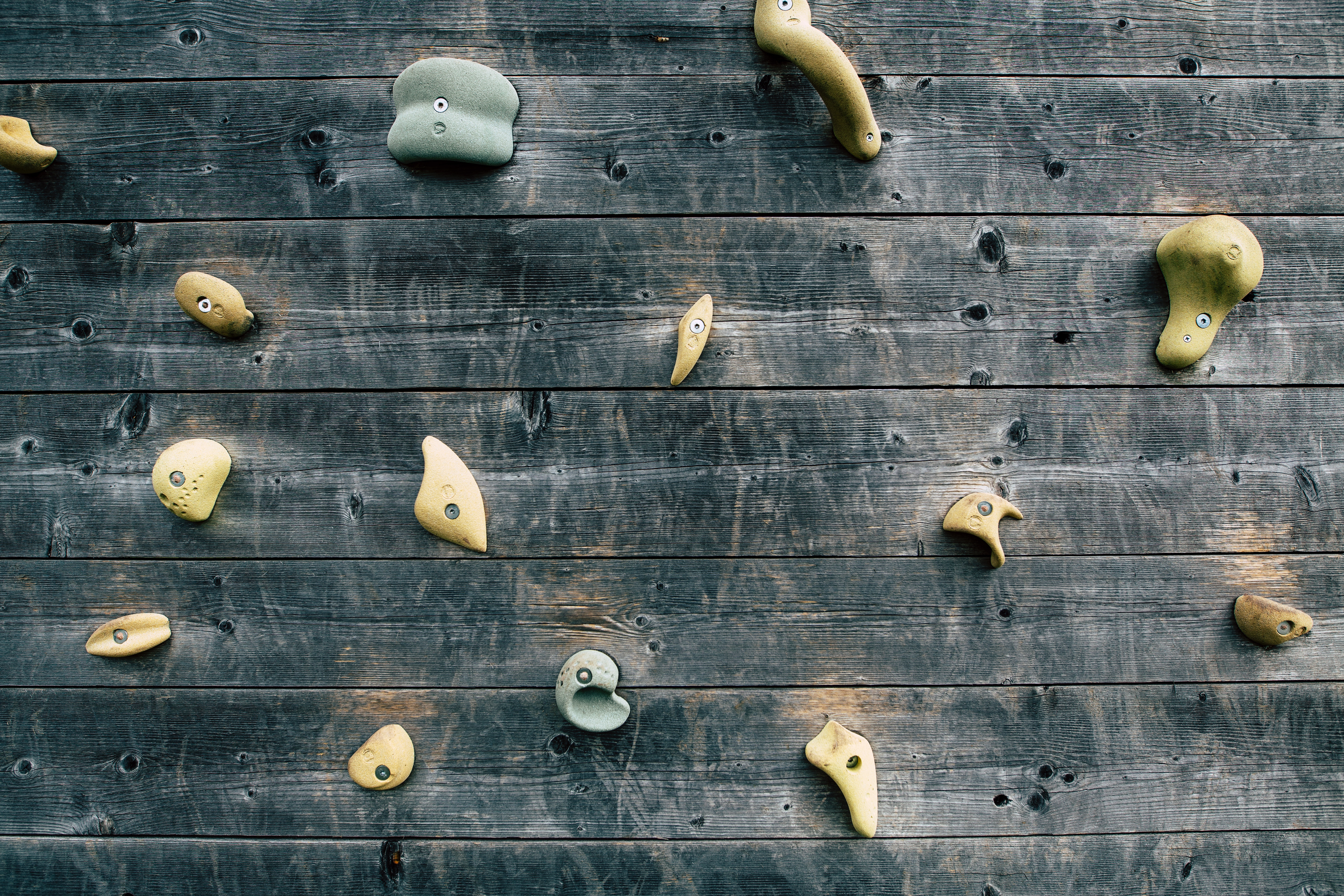 photo of climbing holds on wooden wall